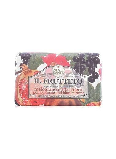 Nestidante Nesti Dante Il Frutteto Pomegranate & Blackcurrant Sabun Temizleyici Renksiz